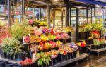 Как открыть цветочный магазин с нуля в 2019 году