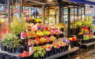 Как открыть цветочный магазин с нуля в 2020 году