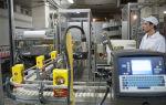 Производство муки как бизнес (2019): оборудование + технология изготовления