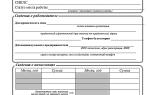 Образец справки для субсидий с места работы, порядок составления и советы при заполнении
