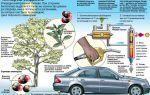 Производство топлива: виды, характеристики, актуальность бизнеса в 2020