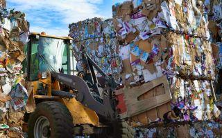 Переработка мусора как бизнес в 2019 году