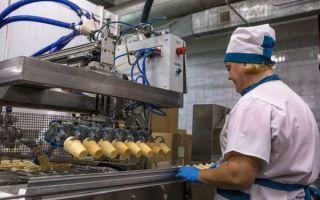 Производство мороженого как бизнес: оборудование + технология как делают 2019