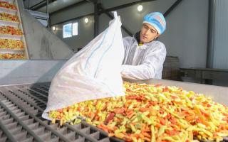 Производство замороженных овощей как бизнес
