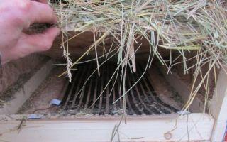 Разведение кроликов по методу михайлова — обзор метода, особенности, пошаговая инструкция и расходы