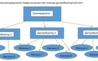 Дистрибьюторский договор: образец, правила составления