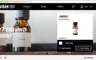 Что нужно для открытия интернет магазина: полезные советы и рекомендации
