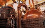 Как отрыть пивоварню с нуля. бизнес-план пивоварни для 2019 года