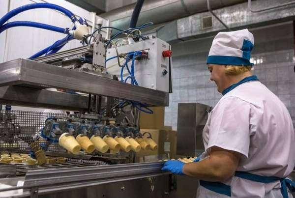 Организация производства мороженого - вкусный бизнес с сезонной прибылью