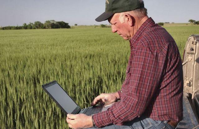 Система налогообложения для сельхозпроизводителей: тонкости