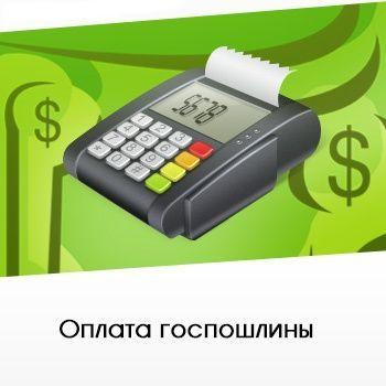 Можно ли оплатить госпошлину в МФЦ - способы, размер платежа и возможные ошибки