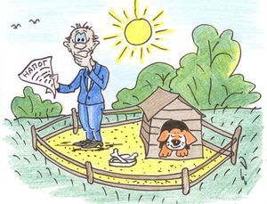 Как оформить ЛПХ - законодательное регулирование, получение участка, организация подсобного хозяйства