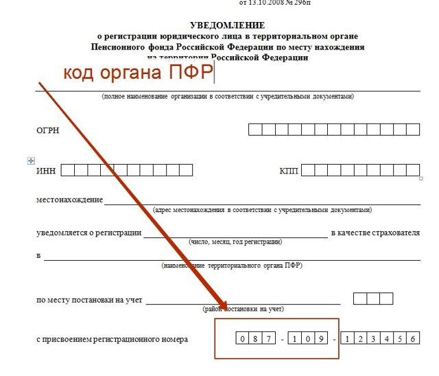 Как узнать код территориального органа ПФР, ИФНС: важно