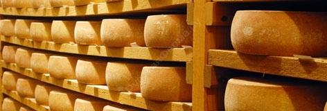 Особенности сыроварения в домашних условиях, преимущества и недостатки, рентабельность и регистрация